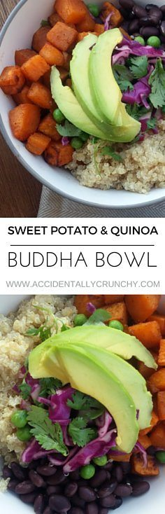 This vegan buddha bowl combo has everything you need to leave you feeling satisfied. Check out the recipe on accidentallycrunchy.com